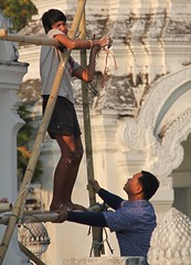 Scaffolding at Wat Suan Dok, Chiang Mai (Sekitar) Tags: boy man work thailand temple scaffolding buddhist mai wat chiang suan dok sekitar earthasia