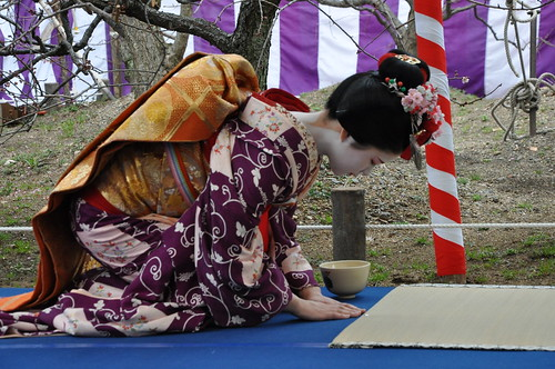 Tea Ceremony -- Maiko