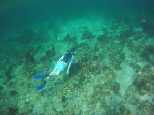 Jamaica Vacation, Negril, Treasure Beach, Montego Bay Feb 4 to 11 2011           -5