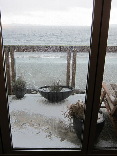 The Snow at Alki Beach