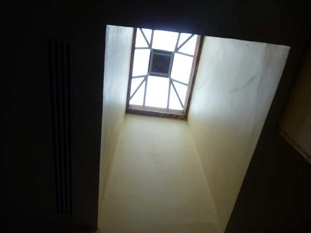 P1080178-2011-03-05-Rhodes-Hall-Phoenix-Flies-Small-Skylight-3rd-Floor