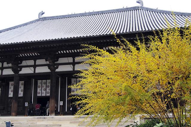 20101117_110945_唐招提寺_金堂(国宝)