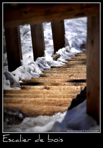 """DSC_0522    """"Escalier"""""""