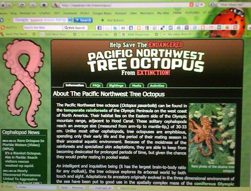 Tree Octopus website