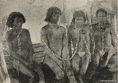 Horrific treatment of Amazon Indians exposed 100 years ago today