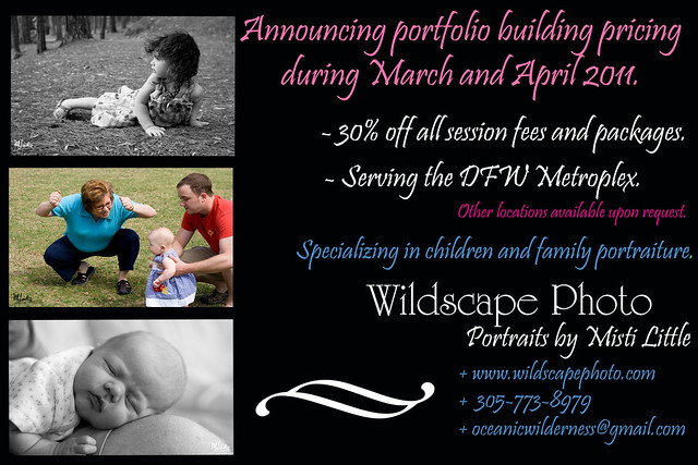 wildscapeportraitbeginning copy