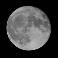 スーパームーンの翌日の満月