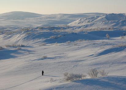 Feltarbeid i Finnmark I