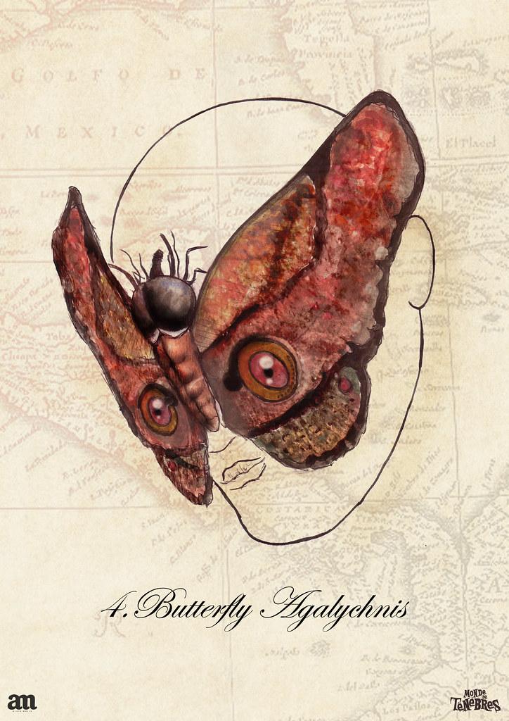 4 Butterfly Agalychnis | Monde de Ténèbre