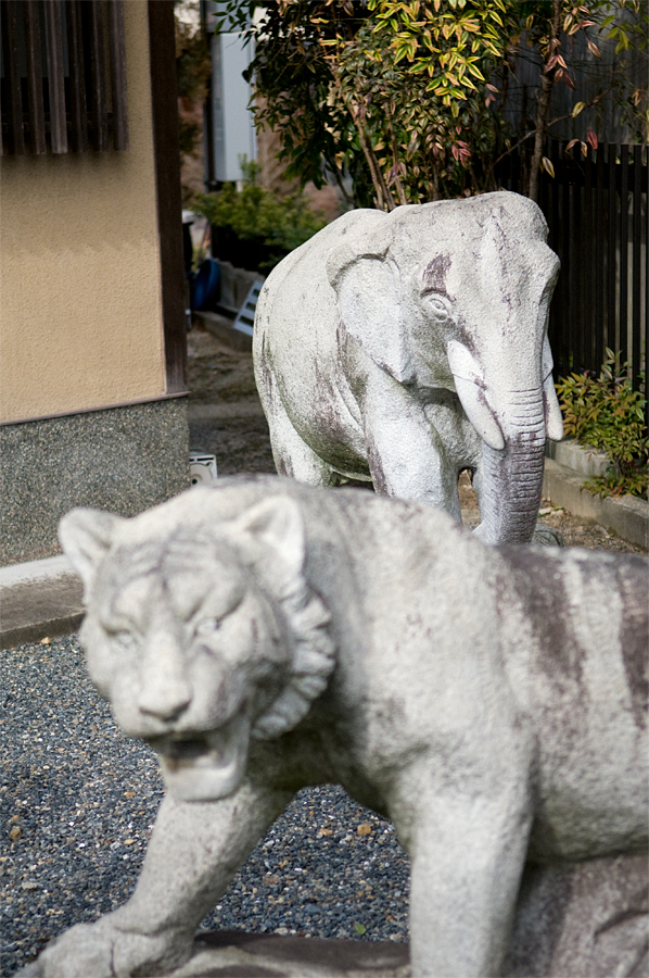 象の像|京都市右京区