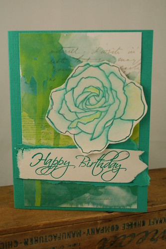 Teal Birthday 006