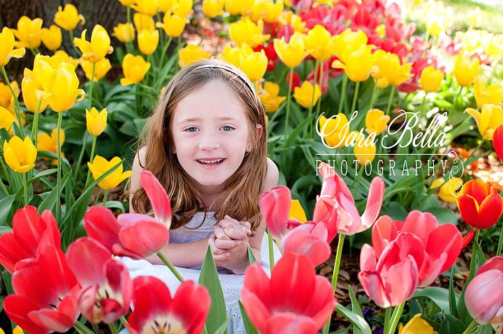 3-17-2011 Walden Tulips (17) copyweb