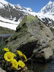 Guggisee Ltschental (blatten) Tags: snow mountains alps switzerland spring bietschhorn ltschenlcke guggisee ltschenal