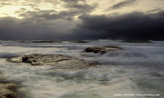 DSC_0708site (alexnovy) Tags: sydney australia bungan alexnovickov