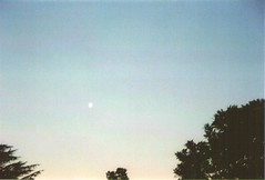 I will always be the moon to you (RL Stars) Tags: trees sunset sky moon film landscape atardecer analgica rboles day paisaje luna cielo da photoart porrio 9702 kniger rlstars