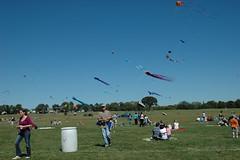 Kite Fest 2010