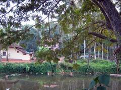Marakkar Kandy (tpms5) Tags: kannur cannanore chovva ayikkara kanayiriver kanayippuzha uruvachal