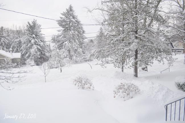 012711 snowday