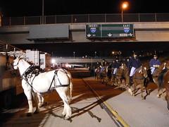 No More Cars ! (Castielj) Tags: california horse humor pasadena nikonp7000 roseparade2011 1stcavalrydivison