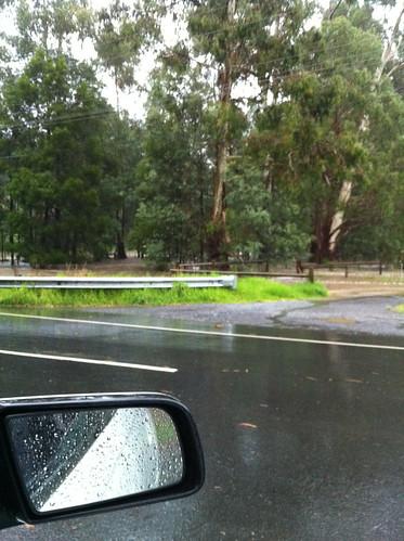 birdsland car park