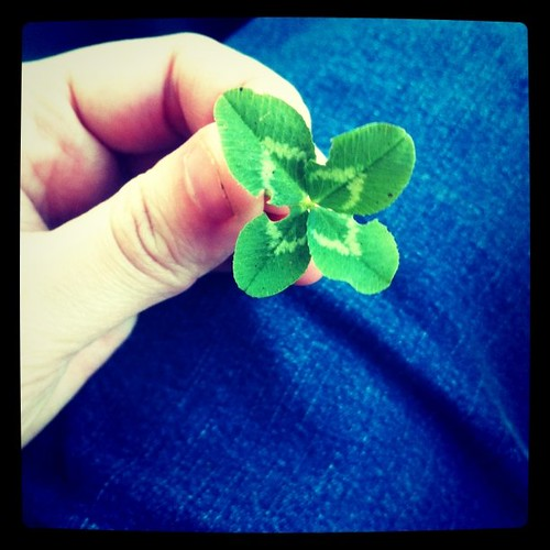 I bet you didn't know I am an expert 4 leaf clover hunter, did you?