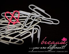 because...you are different! ( Rizalman Kasman Photography) Tags: love different artistic 1001nights paperclips valentinesday clevercreativecaptures 1001nightsmagiccity