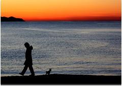 Fermati,guardiamo l'alba (meghimeg) Tags: blue red sky woman dog sun rot beach water girl silhouette cane sunrise rouge donna rojo sand couple wasser mare colours alba blu walk liguria himmel hund cielo frau sole rosso azzurro colori spiaggia coppia rossoblu passeggiata santamargherita contrasti 2011 bagnasciuga seaacqua