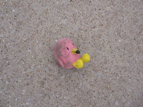 Lost Flamingo - Franklin, TN