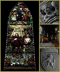 [52/365] paisley abbey (werewegian) Tags: history glass abbey collage angel scotland lion stained christianity paisley picnik day52 feb11 11221 werewegian day52365 3652011 2011year 365the2011edition