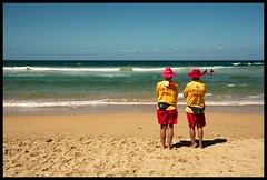Surf rescuers at Manly beach - Sydney