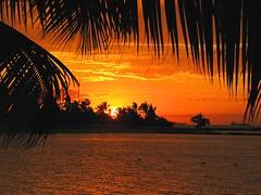 Caribbean Sunset (Oldt1mer - Keith) Tags: trees sunset red orange holiday water yellow clouds palms boats dominicanrepublic ships horizon tropical caribbean laromana doublyniceshot tripleniceshot mygearandme mygearandmepremium mygearandmebronze mygearandmesilver mygearandmegold mygearandmeplatinum mygearandmediamond
