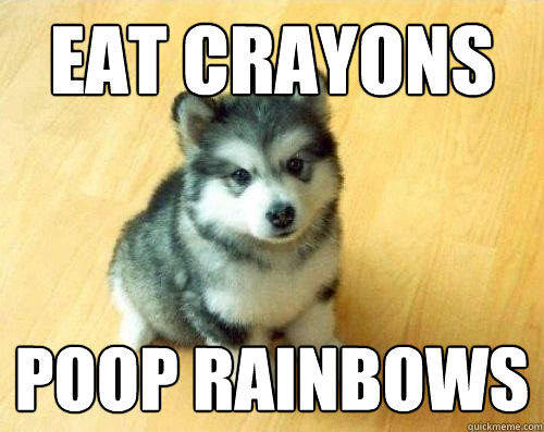 poopbow