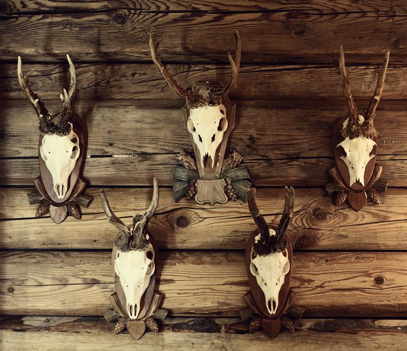 Skulls, Mayrhofen