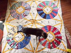 Goodwill Coverlet (LolliePatchouli) Tags: quilt graphic patchwork goodwill coverlet quiltgoodwillbunky