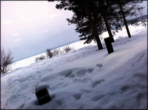 snowy frozen baltic sea