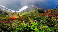 Madeira, Portugal, Cabo Girao (Highest cliff in Europe) (© the-best-is-yet-to-come ©) Tags: madeira ilustrarportugal blinkagain