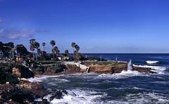 lj_30 (SamOphoto2011) Tags: california canon sandiego cove lajolla velvia eos1v 2770l