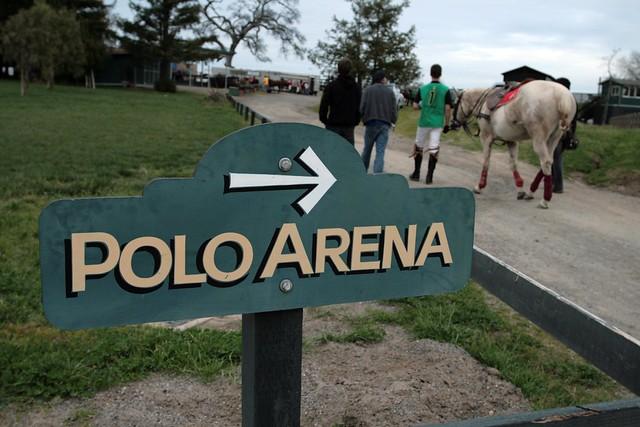 polo arena