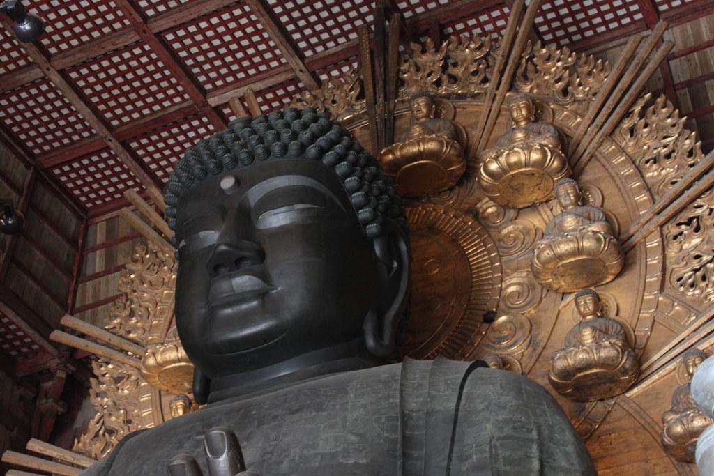 Nara Guide (14)