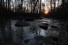 WAL Susquehanna SP 3-12-11 (27) (Ken Krach Photography) Tags: morning trees winter streams susquehanna