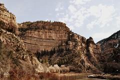 sixteen (juie8) Tags: nature landscapes nikon colorado aspen d3100