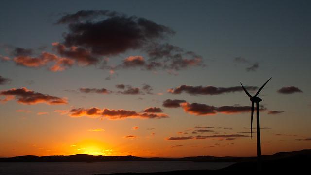 Albany Wind Farm at sunset