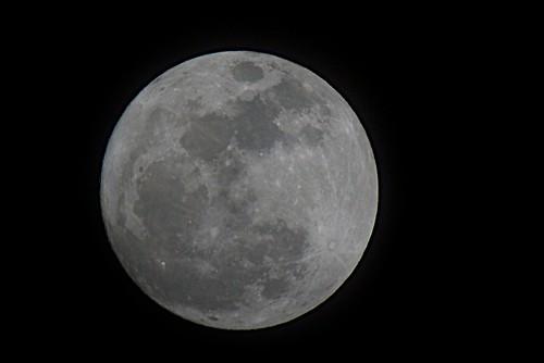 _DSC4273 super moon 2011.03.19