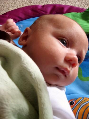 2011-03-16 santa rosa 005
