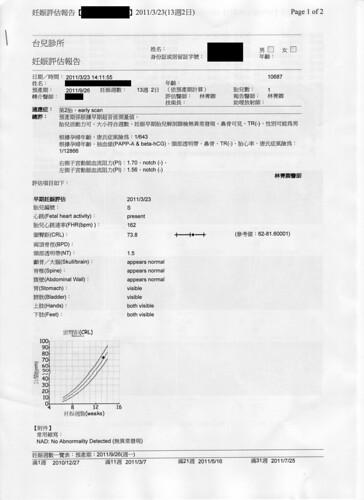 [13W+2D] 無敵兔初期妊娠評估報告