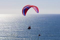 IMG_300_Paraglider_201103