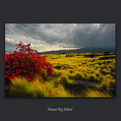 Hawaii #0209 (alexander.garin) Tags: nature landscape hawaii nikon bigisland bestcapturesaoi elitegalleryaoi