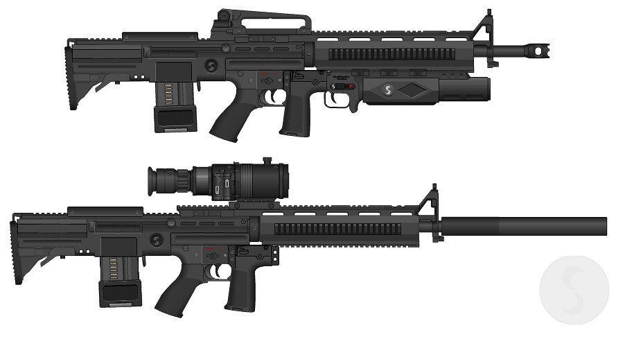 Sweetwater Precision Weapons M53ARX