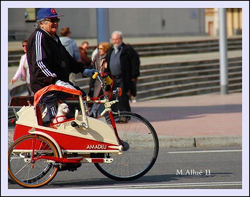 Triciclo by Miguel Allué Aguilar