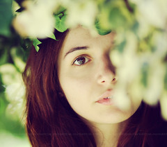 Ethereal beauty in the natural world. (Maria Dattola) Tags: portrait canon eos  ritratto 2011 85mmlens 1000d mariadattola